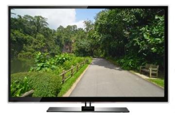 Virtuelle Spaziergänge - Singapur Tropische Gärten Laufband und Fahrradtraining -